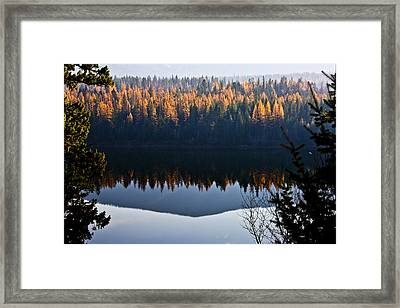 Reflecting On Autumn Framed Print