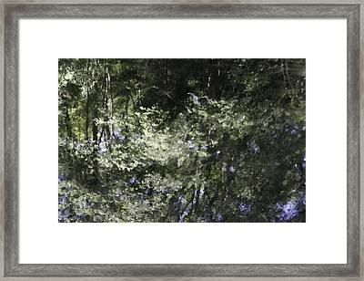 Reflecting On Leaming's Pond Framed Print