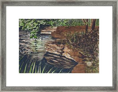 Reflecting On The Land In The City Framed Print by Ted Gordon