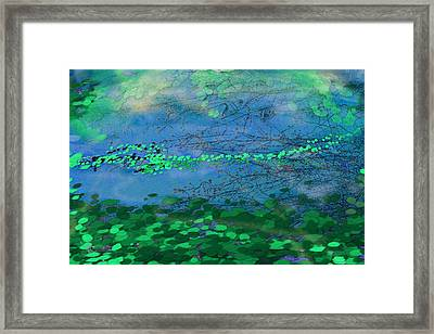 Reflecting Pond Framed Print
