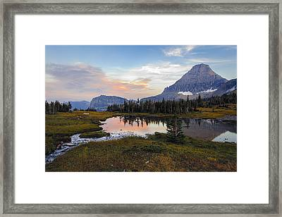 Reflecting Pool Framed Print