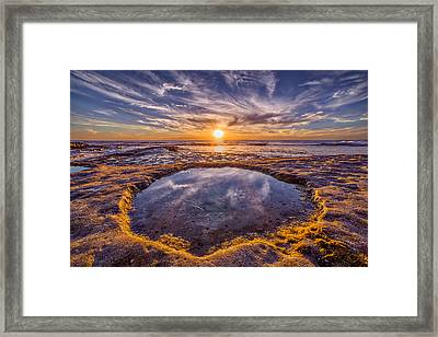 Reflecting Pool Framed Print by Peter Tellone