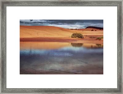 Reflection - 1 - Coral Pink Sand Dunes - Utah Framed Print by Nikolyn McDonald