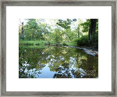 Reflection Along Beetree Run Framed Print