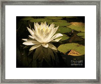 Reflection Framed Print by Amy Strong