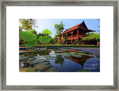 Reflection Framed Print by Buchachon Petthanya