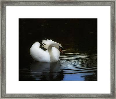 Reflection Framed Print by Deb Cohen