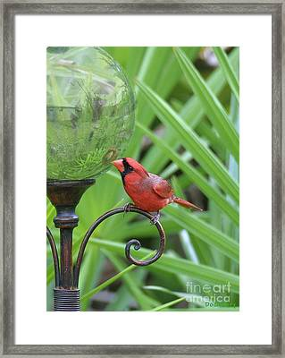 Framed Print featuring the photograph Reflection by Dodie Ulery