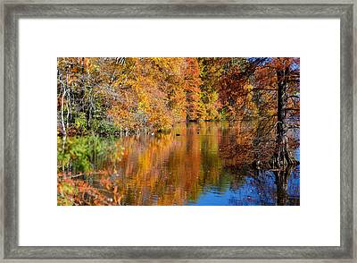 Reflected Fall Foliage Framed Print