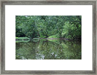Reflection Framed Print by Heidi Poulin