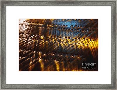 Reflection Framed Print by Hideaki Sakurai