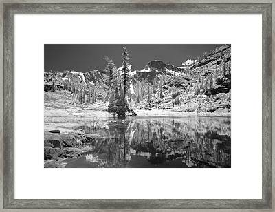 Reflection In Bagley Lake Framed Print