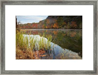 Reflection In The Fort River Framed Print by Iris Greenwell
