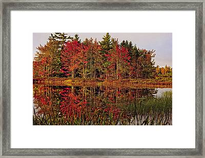 Framed Print featuring the photograph Reflection Island by Kathleen Sartoris