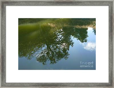 Reflection Framed Print by JoAnn SkyWatcher