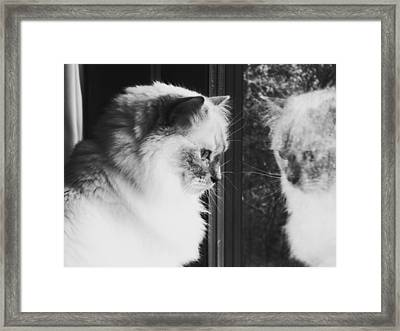 Reflection Framed Print by Karen Stahlros