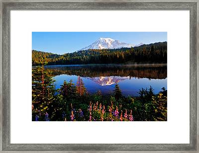Reflection Lake Mt Rainier Framed Print by Alvin Kroon