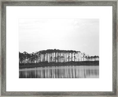 Reflection Framed Print by Laura Burchfield