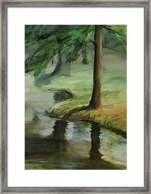 Reflection Framed Print by Lori McCray