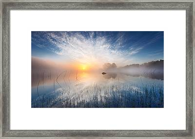 Reflection Framed Print by Martin Lutz