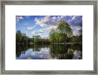 Reflection Framed Print by Martin Newman
