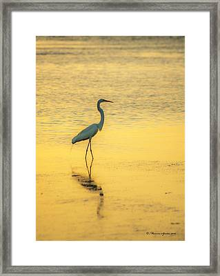 Reflection Framed Print by Marvin Spates