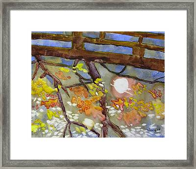 Reflection Framed Print by Melody Cleary