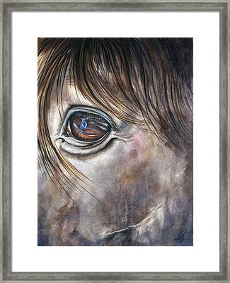 Reflection Of A Painted Pony Framed Print