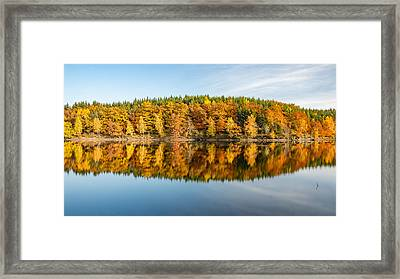 Reflection Of Autumn Framed Print by Andreas Levi