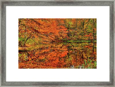 Reflection Of Autumn Framed Print