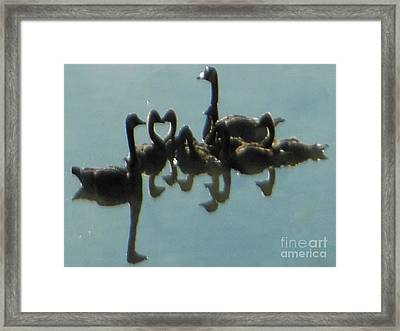 Reflection Of Geese Framed Print