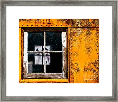 Reflection Of Light In The Midst Of Decay Framed Print