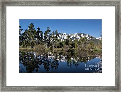 Reflection Of Mount Tallac Framed Print by Webb Canepa