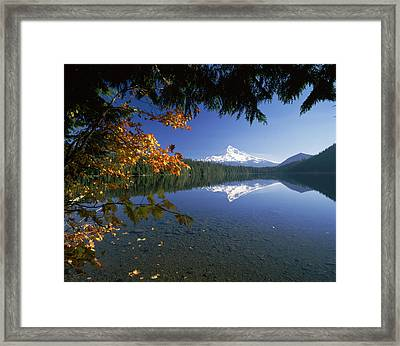 Reflection Of Mountain And Trees Framed Print