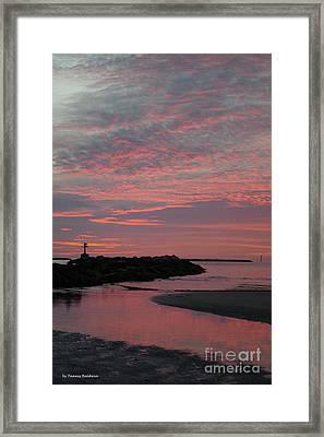 Reflection Of Pink Framed Print