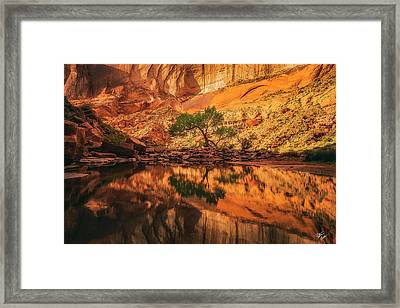 Reflection Of Time Framed Print by Peter Coskun