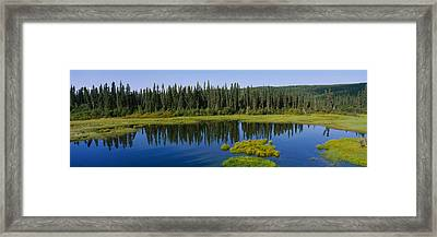 Reflection Of Trees In A Pond, British Framed Print