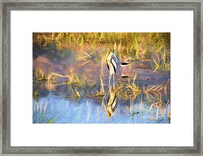 Reflection Framed Print by Pravine Chester