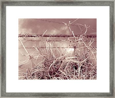 Framed Print featuring the photograph Reflections 1 by Mukta Gupta