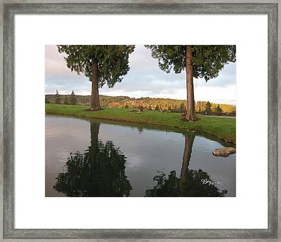 Reflections #183 Framed Print by Barbara Tristan