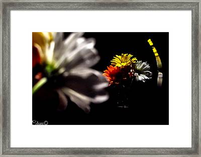 Reflections 2 Framed Print