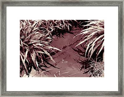 Framed Print featuring the photograph Reflections 2 by Mukta Gupta