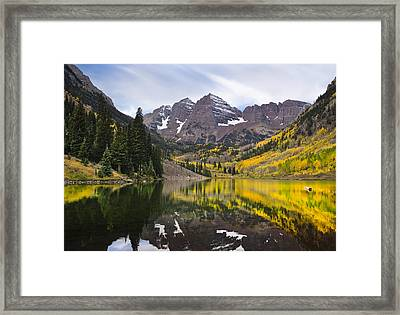 Reflections And Aspen Trees Framed Print
