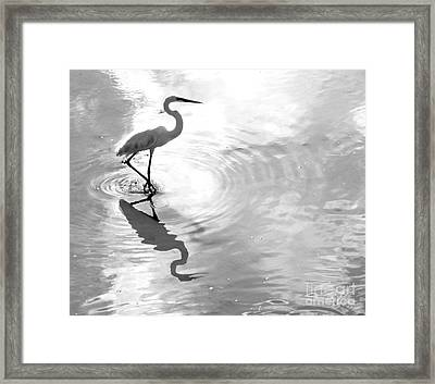 Reflections And Ripples Framed Print by Christy Ricafrente