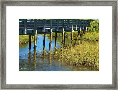 Reflections And Sea Grass Framed Print
