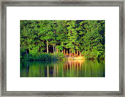 Reflections At Farrington Lake 6 Framed Print by Aron Chervin