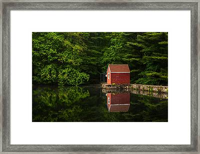 Reflections At Stewart Woods Framed Print by Karol Livote