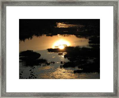 Reflections At Sunset Framed Print