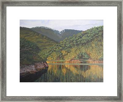 Reflections At The Dam Framed Print by Anji Worton