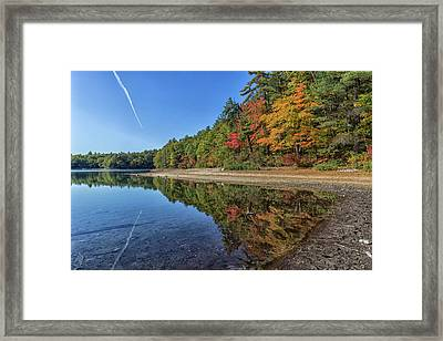 Reflections At Walden Pond Framed Print